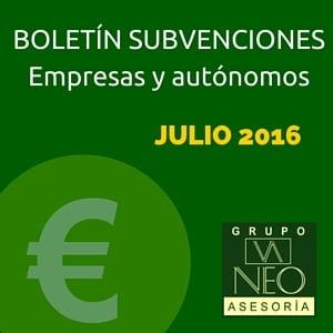 Boletín subvenciones empresas y autónomos: JULIO 2016