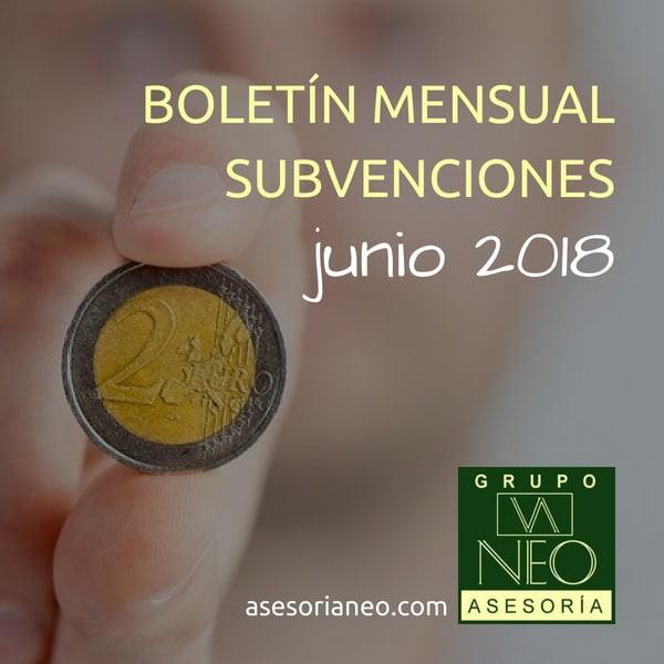 Subvenciones empresas y autónomos Andalucía | JUNIO 2018
