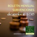boletín_subvenciones_diciembre_2018