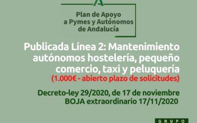 Publicada Línea 2: subvención mantenimiento autónomos (1.000€)