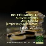 https://asesorianeo.com/wp-content/uploads/2021/06/BOLETIN MENSUAL_SUBVENCIONES ASESORIA NEO JUNIO 2021